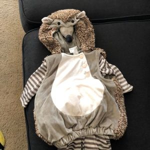 Other - Baby Hedgehog costume 0-6months